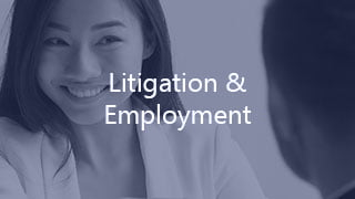 Litigation & Employment